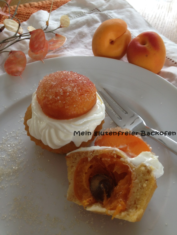 Aprikosen-Törtchen2