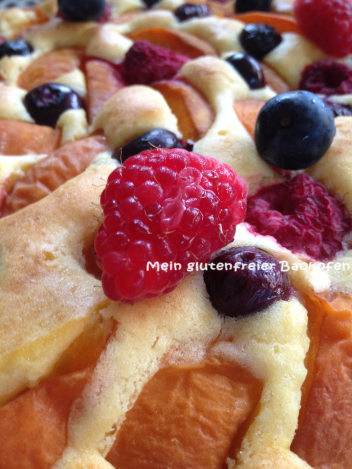 Aprikosenkuchen3